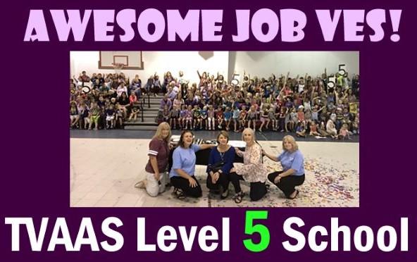 level 5 School