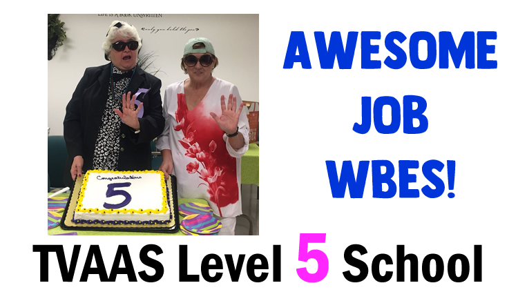 WBES TVAAS Level 5 School
