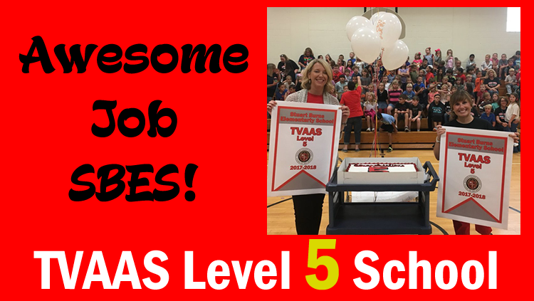 SBES TVAAS Level 5 School